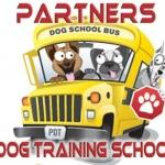 Partners dog training